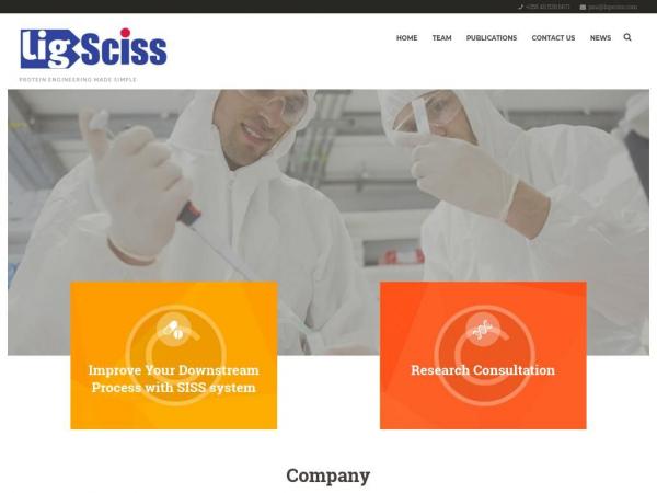 ligsciss.com
